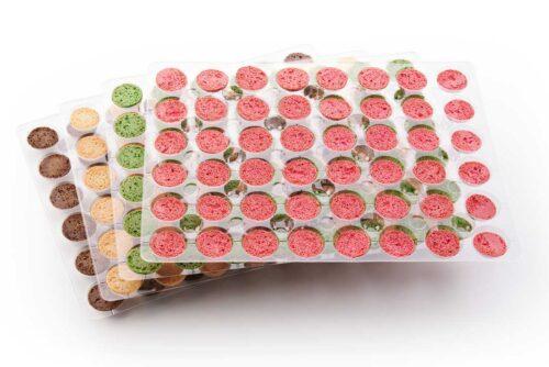 Macarons-Klassik